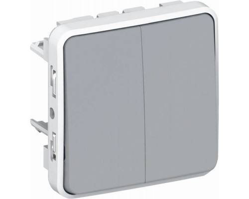 Legrand Plexo переключатель 2-клавишный IP55 (69525)